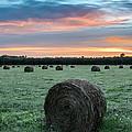 Hayfield Sunrise 3d21735 by Guy Whiteley