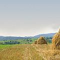 Hayrack Panorama by Vlad Baciu
