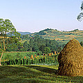 Haystack At The Hillside, Transylvania by Panoramic Images
