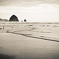 Haystack Rock And Cannon Beach by Scott Rackers