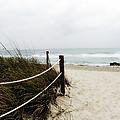 Hazy Beach Day by Julie Palencia