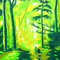 Hazy Sunny Forest by Casoni Ibolya