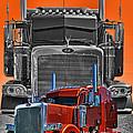 Hdrcatr3079a-13 by Randy Harris