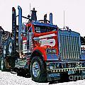 Hdrcatr3120-13 by Randy Harris