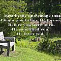 He Sanctified You by Leticia Latocki