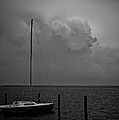Head In The Clouds In Black And White by Mark Miller