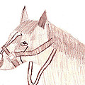 Head Of A Horse by Marissa McAlister