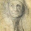 Head Of A Woman by Michelangelo Buonarroti
