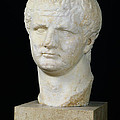 Head Of Titus by Anonymous