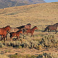 Heading For The Hills by Gene Praag