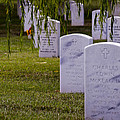 Headstones Of Arlington Cemetery by B Christopher