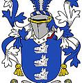 Healey Coat Of Arms Irish by Heraldry