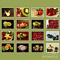 Healthy International Fruits Collection by Inspired Nature Photography Fine Art Photography