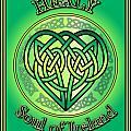 Healy Soul Of Ireland by Ireland Calling