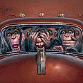 Hear No Evil See No Evil Speak No Evil by Mark Fredrickson