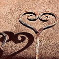 Heart And Shadow by Art Block Collections
