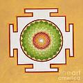 Heart Chakra by Mayki Wiberg