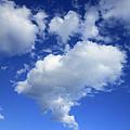 Heart Cloud 4-14-12 by Steve Fields