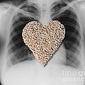 Heart Healthy Food by Gwen Shockey