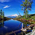 Heart Lake And Mt Shasta Reflection by Scott McGuire