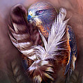 Heart Of A Hawk by Carol Cavalaris