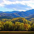 Heart Of Cataloochee by Wil Barker