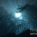 Heart Of Light On A Foggy Night Sky by Carlos Alkmin