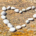 Heart Shape by MotHaiBaPhoto Prints