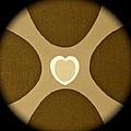 Heart Three by Lorna Maza