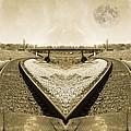 Heart Tracks by Betsy Knapp