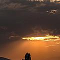 Heaven Is Open  by Sotiris Filippou