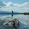 Heaven Reflected by Jennie Stewart