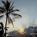 Heavenly Rays by Teresa Zieba