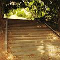 Heavenly Stairway by Madeline Ellis