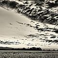 Heavenly Summer Sky by Don Schwartz
