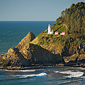 Heceta Head Lighthouse - Sunny by Brian Jannsen