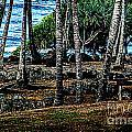 Heiau Wailua River by Charles Davis