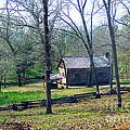 Helen Lee's Pioneer Log Cabin by Kathy  White