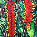 Heliconia Rostrata by Karin  Dawn Kelshall- Best