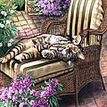 Hello From A Kitty by Regina Femrite