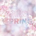Hello Spring Sakura Cherry Blossoms Watercolor Background by Beverly Claire Kaiya