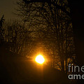 Hello Springtime Sunrise by Thomas Woolworth