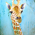 Hello There by Diane Marcotte