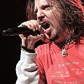 Hellyeah by Concert Photos