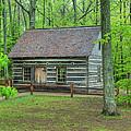 Helser Log House by Guy Whiteley