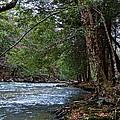 Hemlock Creek Edge by Jake Donaldson