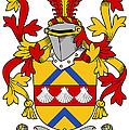 Hemphill Coat Of Arms Irish by Heraldry
