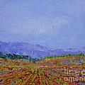 Henderson Farm by Gail Kent