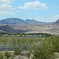 Henderson Nevada Desert by Emmy Vickers