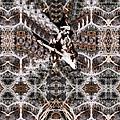 Hendrix Fusion by Nona  Hatay